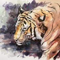 The Tiger - pen and watercolour