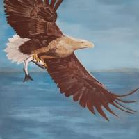 Eagles Catch