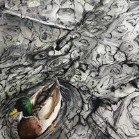 Water patterns and a Mallard. Watercolour