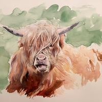 Highland Bull - pen and watercolour