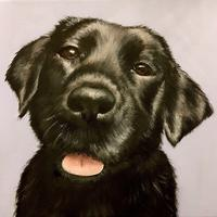 Personal pet portrait commissions taken