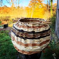 Small sculptural basket with willow varieties and Russian Vine.