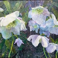 Hellebores. Collage