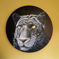 Black Leopard - Acrylic on circular linen canvas  50 cm diameter