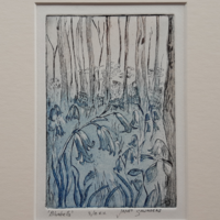 """'Bluebells' - etching, image 100 x 147 mm (4""""x 5.75""""), mounted 8"""" x 10"""""""