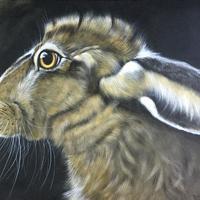 Brown Hare - Acrylic on linen canvas 80 x 60 cm