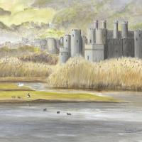 """Acrylic, 24""""x18"""". A view of Conway castle across the beautiful river Conway estuary from the RSPB nature reserve."""