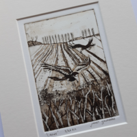 """'Crows' full image, 100 x 147 mm (4""""x 5.75""""), mounted 8""""x 10"""""""