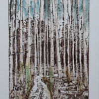 """'Forest Trail' - etching, img 100 x 147mm (4""""x 5.75""""), mounted 8"""" x 10"""""""