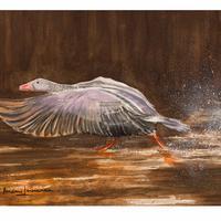 """Water colour, 12""""x 9"""". Taking flight in a Norfolk Broads sunrise."""