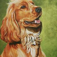 'Harry' - The hairdresser's Cocker Spaniel, acrylic on canvas.