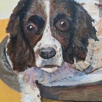A Dog in acrylics