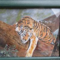 Tiger in oils