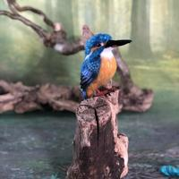 King Fisher Needle Felted 3D Sculpture