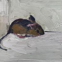 Oil Painting of a Mouse.  Oil Painting on Board. 18cm x 24cm