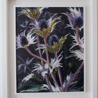 Sea Holly, an Oil Painting