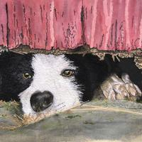 'A Dog's Life',  Free motion machine stitched image, measuring 35cms x 26cms.