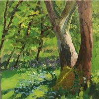 Spring Sunshine. Oil on Canvas. 30cm x 30 cm