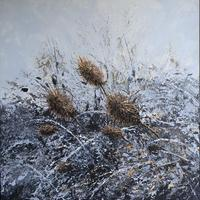 """""""Teasels in Winter Hedgerow"""" - Acrylic on Canvas - 60cm x 60cm - £370"""