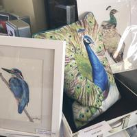 Kingfisher, Peacock and Peahen - original watercolours, prints, cushions and greetings cards