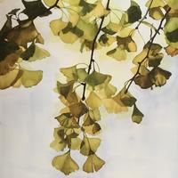 Golden Ginkgo - original watercolour, greetings cards and prints to order.