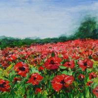 Acrylic painting of poppy field. Mounted and framed behind glass. 58x48cn £210
