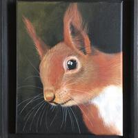 Red Squirrel - Framed acrylic on canvas. 31 x 37 cm