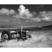 TEF 20 Abandoned Tractor - Committee Road, North Uist