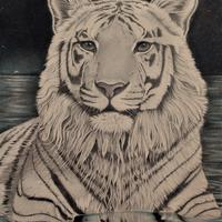 'White Tiger of the Western Skies'. Graphite and coloured pencil drawing of a white tiger with a cosmic backdrop (look closely and you will see that there are stras in his eyes also!)