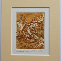 """'Woodmouse' - etching, image 73 x 95 mm, mounted 6"""" x 8"""""""