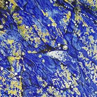 Blue and Gold (Rockpools)
