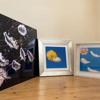Artworks (in order The catch - Changeable weather - Florealism)