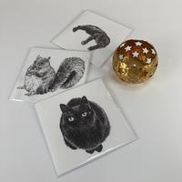 Animal Card Collection