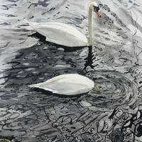 Stratford Upon Avon, the ducking swan. 20x16 inches mounted. £180.00