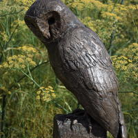Barn Owl in bronze resin.  Limited edition sculpture.
