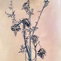 Thistles, ink on paper
