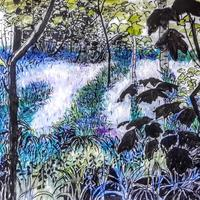 Bullimore bluebell woods, indian ink and watercolour on paper.  A2 (59x42cm)
