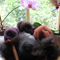 Hand combing some over-dyed blue texel, ready to spin