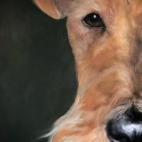 The Serious Mr Fox - Oil on Board