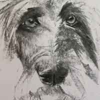 Gentle Boy - Charcoal on Paper