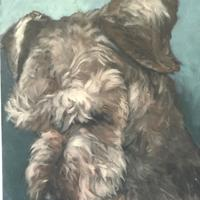 Shy Welshie - Oil on Canvas