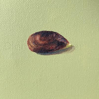 """Apple on Sage #interiors , oil on canvas 6 x 6"""" or Giclee print on 310gsm Museum paper"""