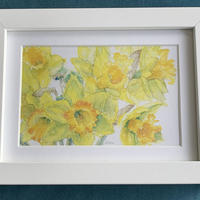 Narcissus (detail), giclee print of watercolour by Dion #Narcissus #watercolour #daffodils #flowers #remembering #spring