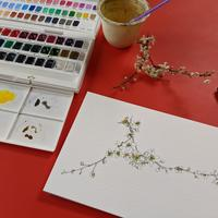 A5 watercolour and drawing of 'White blossom'