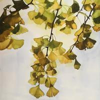 Golden Ginkgo - original watercolour