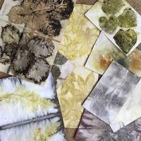 Ecodyed papers using leaves, to be used in cards, books and other collage