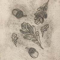 'Acorns' etching