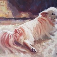 Minnie relaxing. This is my little dog in one of her favourite spots in the sunshine. Oil on board 20x16""