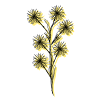 Digital illustration of yellow daisies with black line drawing