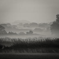 Farm in the Mist, black and white